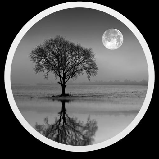Reflect Studio 3.1 破解版 – 图片镜面倒影特效处理软件